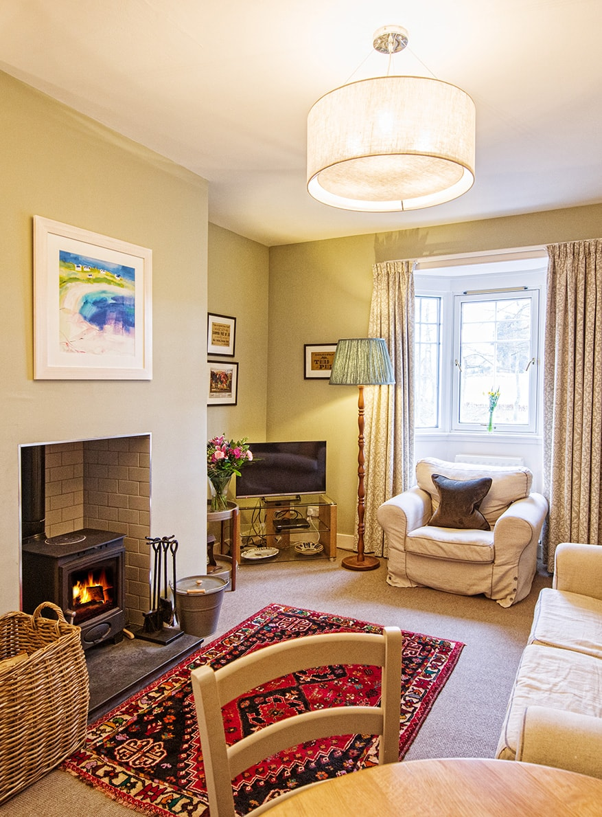 Pine - Remote Holiday Cottage Lounge