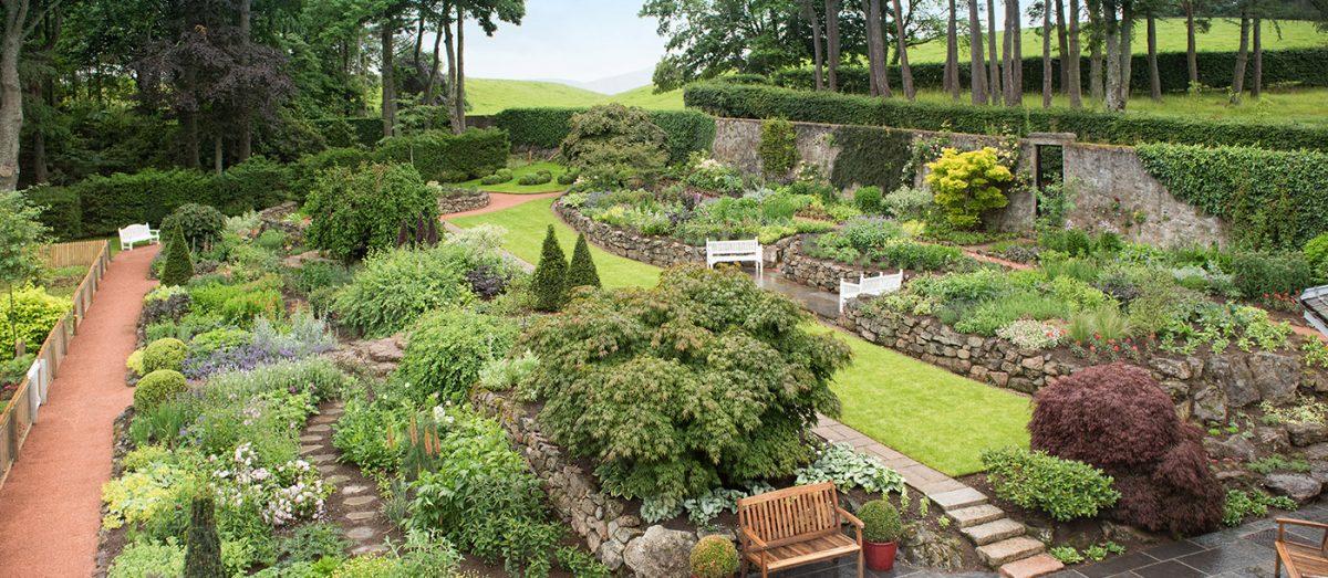 douneside gardens in summer