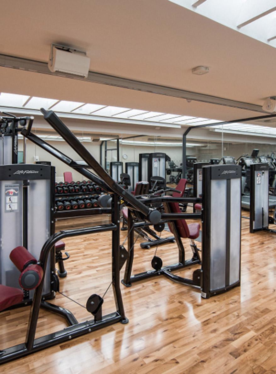 douneside house gym